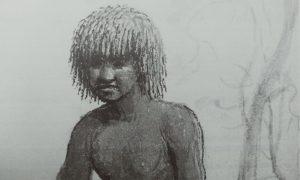Tasmanian indigenous