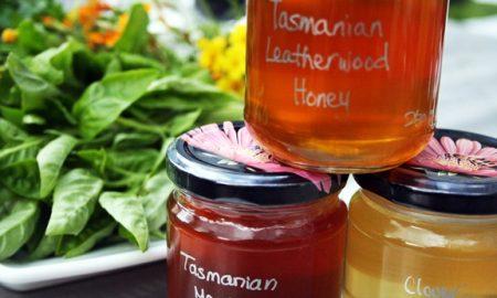 leatherwood honey jars