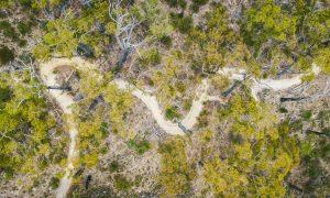St Helens mountain bike trail